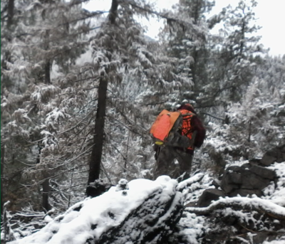 Trudging through snowy forest